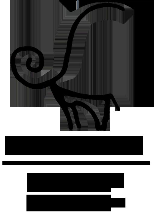 AECVETA – Agence Européenne pour le développement du Char à Voile Et du Tourisme d'Aventure